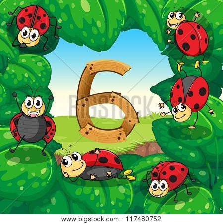 Six ladybugs on leaves with number 6 illustration