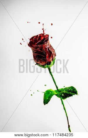 Beautiful Dark Red Rose Made Of Paint