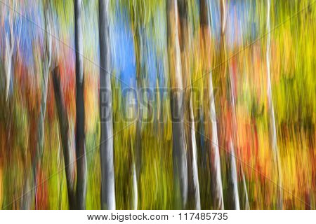 Abstract landscape of colorful autumn forest trees with bright fall foliage and blue sky.  Image produced by camera motion.