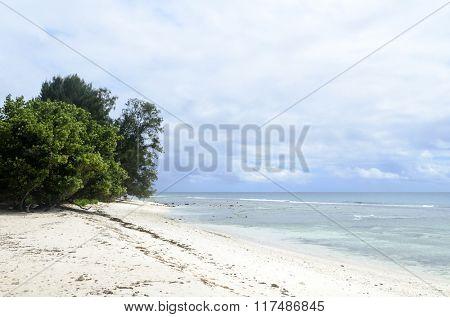 Tropical beach on Seychelles island,La Digue