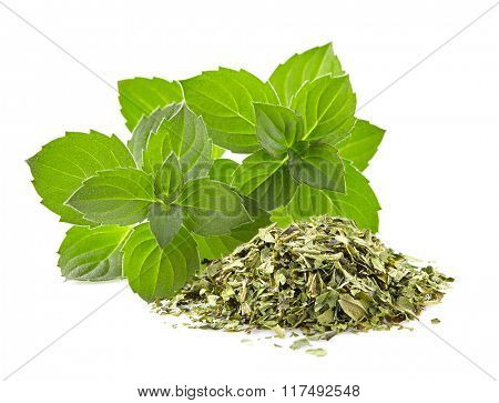 Mint fresh and dried