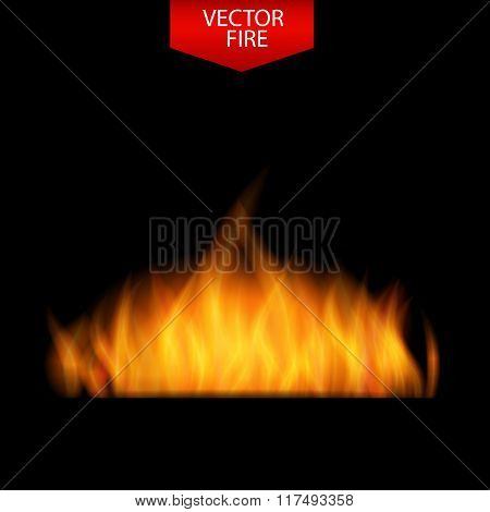 Naturalistic Fire on Dark  Background. Vector Illustration