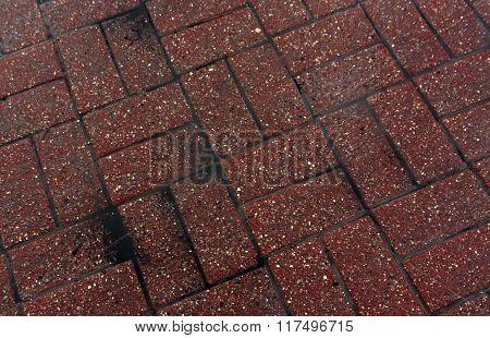 Color Wet Pavement Closeup.