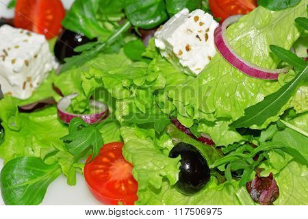 Mixed Salad With Tomatoes With Feta Cheese