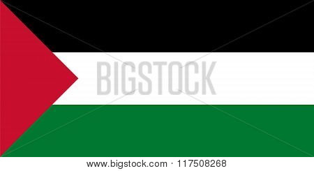 Standard Proportions For Palestine Flag