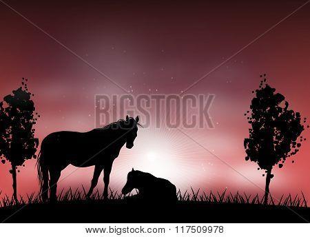 Romantic Horse Silhouette