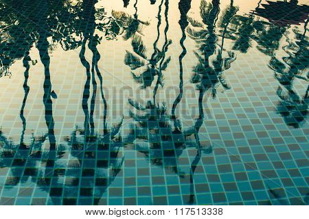 Palm trees reflected in the water of the pool.
