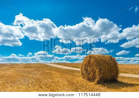 Beautiful Landscape Harvested Field Shot On A Sunny Day