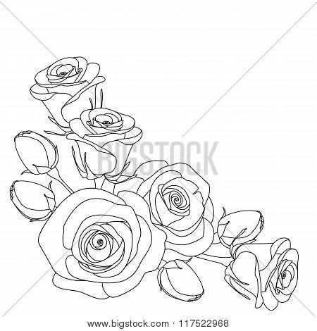 roses, monochrome illustration, coloring page