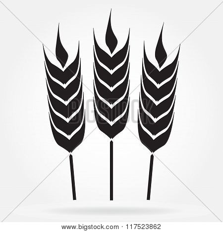 Wheat ears or rice icon. Agricultural symbol. Vector illustration.