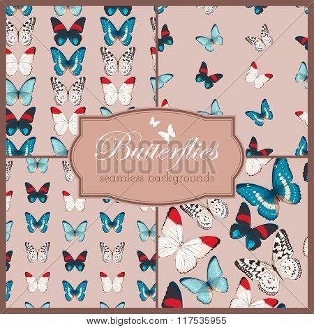 Butterflies seamless set
