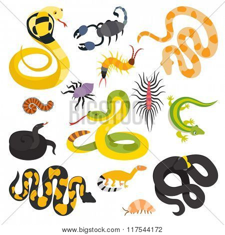 Vector flat snakes and other danger animals collection isolated on white background. Vector snakes flat style. Different snakes, scorpions vector cartoon illustration