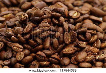 coffee yellow Bourbon