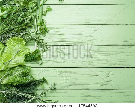 Green herbs on the green wooden background.