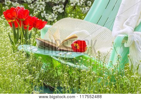 Relax In Blossoming Garden On A Spring Day