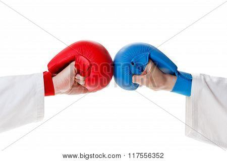 Karate Gloves On Hands
