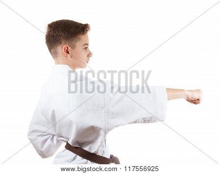 Young Karate Boy In White Kimono With Brown Belt
