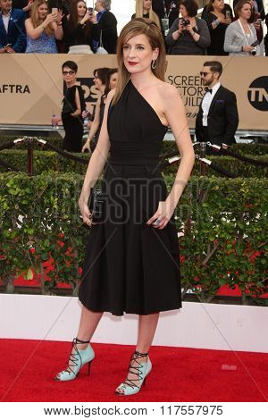 LOS ANGELES - JAN 30:  Raquel Cassidy at the 22nd Screen Actors Guild Awards at the Shrine Auditorium on January 30, 2016 in Los Angeles, CA
