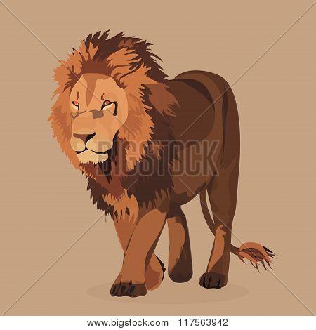 Lion king of animals walking. Vector illustration