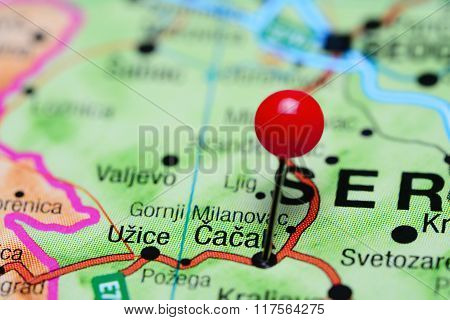 Cacak pinned on a map of Serbia