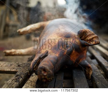 Pig Ready To Be Butchered