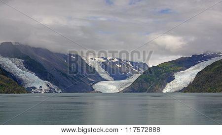 Tidal Glaciers On The Coast