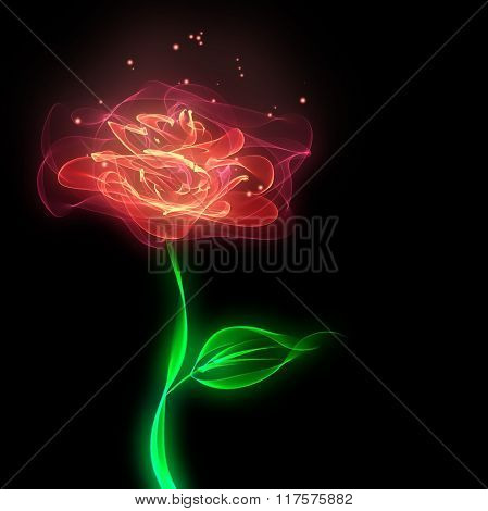 Abstract rose flower