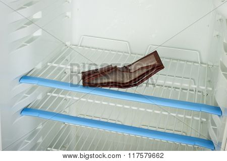 Empty wallet in the refrigerator