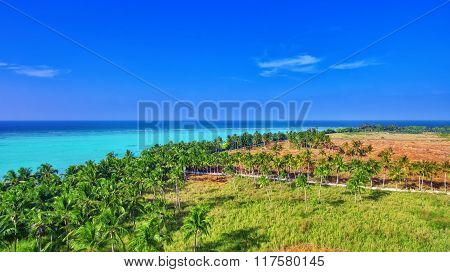Beautiful Tropical Island From Above. Maldives, Whole Island Thoddoo.