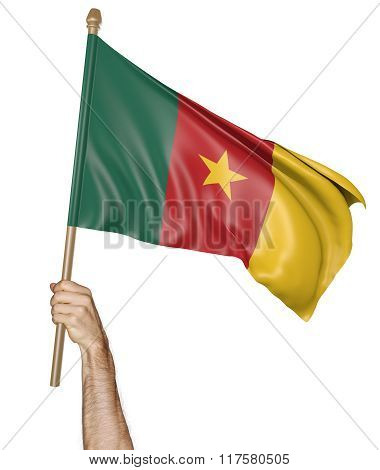 Hand proudly waving the national flag of Cameroon