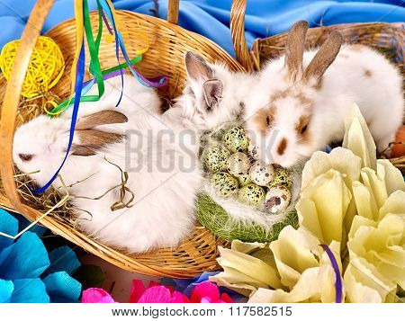Easter still life with eggs and rabbit in basket. Top view.