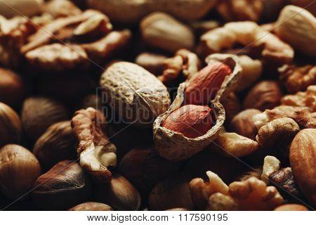 Background of hazelnuts, walnuts, almonds, acorns and peanuts