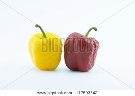 Wither Pepper, Isolated On White.