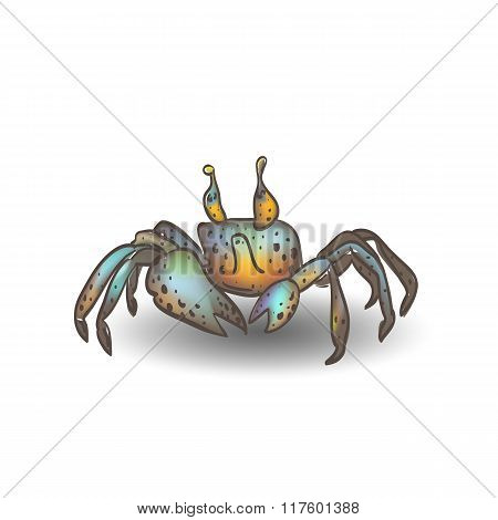 Funny little crab with the shadow.