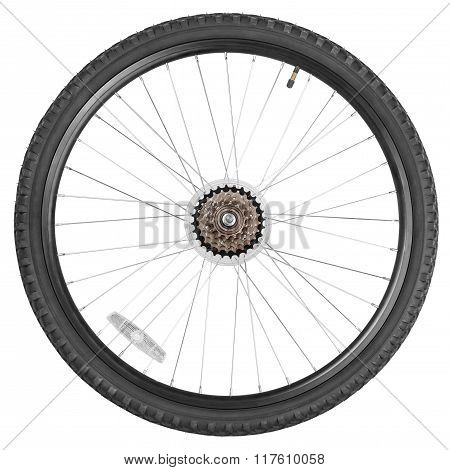 Rear Wheel For Mountain Bike