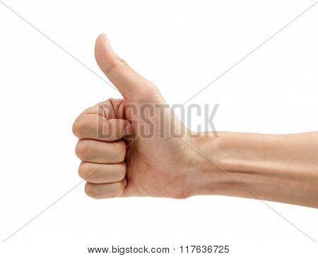 Man Hand With Thumb Up Isolated On White Background.