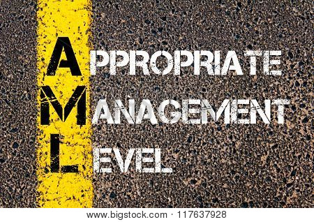 Business Acronym Aml Appropriate Management Level
