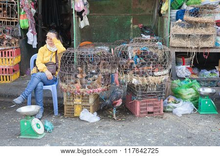 Woman is selling chickens at the wet market