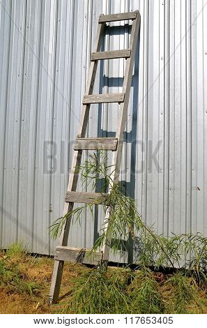 Old wood ladder leans against a building
