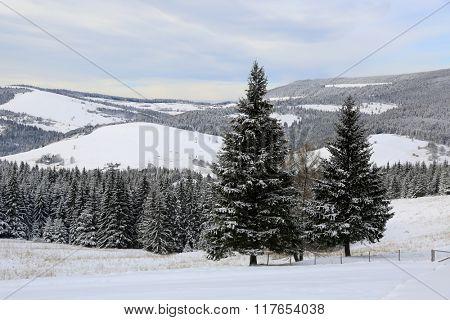 nice winter landscape in Slovakia