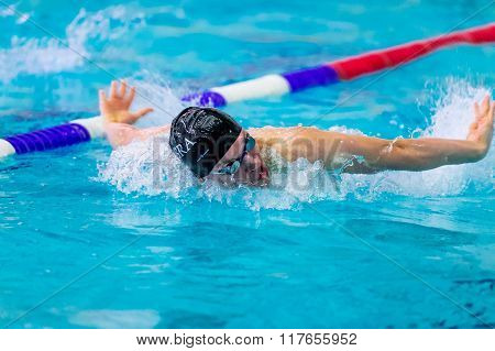male athlete swimming butterfly stroke in pool