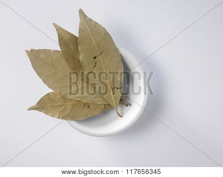 top view of the bay leaf