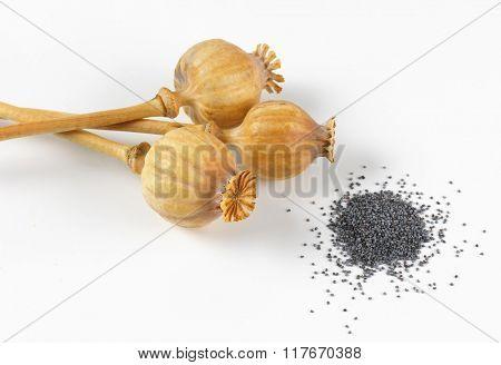 three poppy heads and poppy seeds on white background