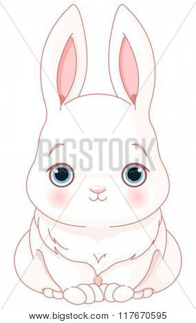 Illustration of cute white bunny