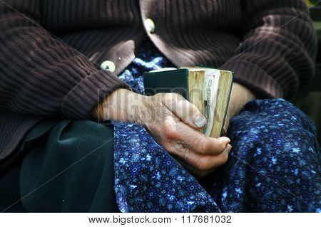 Elder Hands Holding The Holy Bible