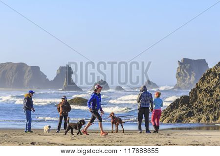 People with dogs enjoy views of the ocean surf