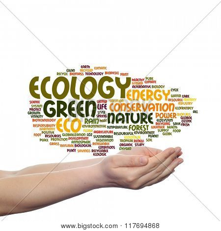 Concept or conceptual abstract green ecology, conservation word cloud text in man hand on background