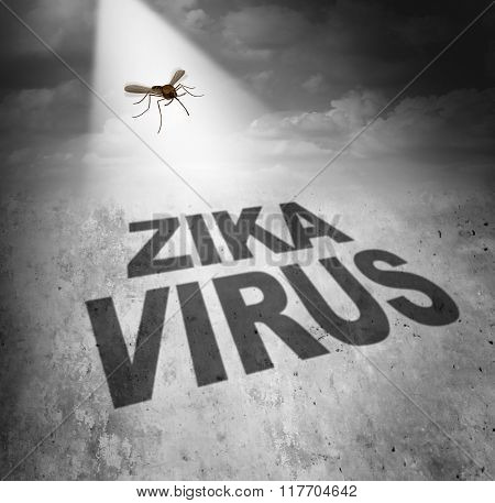 Zika Virus Risk