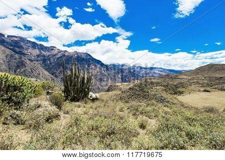 landscape of Peru