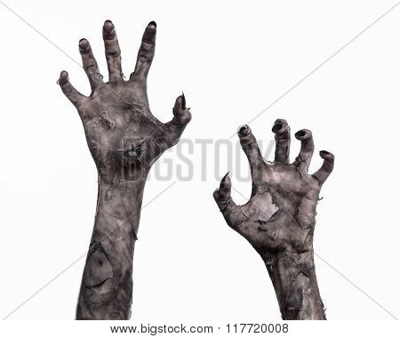 Black Hand Of Death, Zombie Theme, Halloween Theme, Zombie Hands, White Background